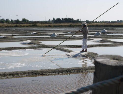 Notre producteur de sel à Noiremoutier